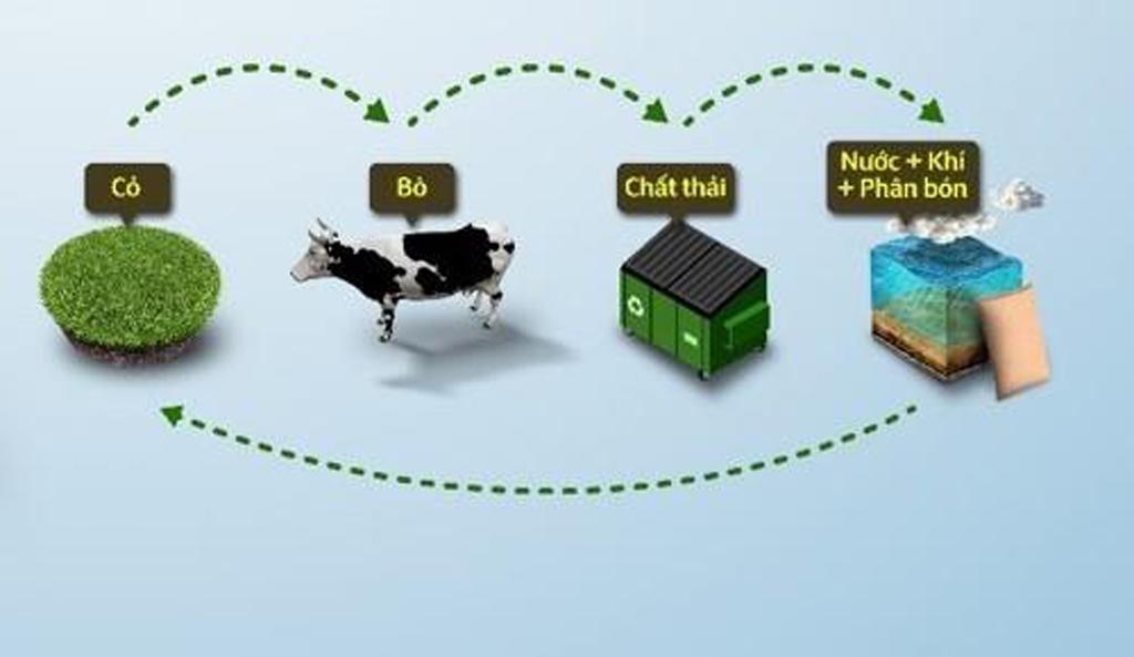 'Kinh tế tuần hoàn' tạo giá trị bền vững cho doanh nghiệp ngành sữa ảnh 9