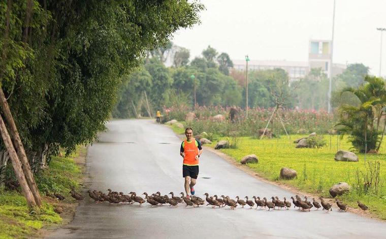 Ecopark Marathon 2021 - Ngắm cung đường chạy giữa thiên nhiên 'siêu chất' trước giờ G ảnh 4