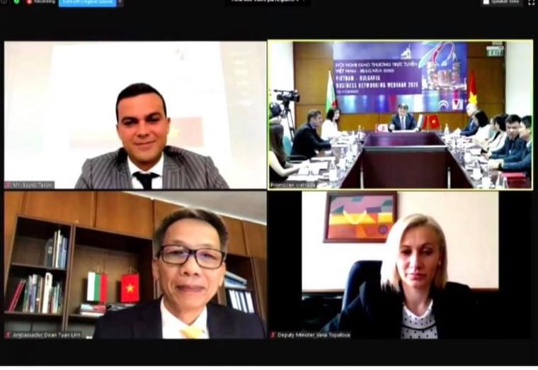 Tận dụng cơ hội thị trường Bulgaria từ EVFTA ảnh 2
