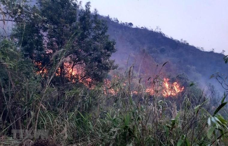 Lai Châu: Cháy rừng bùng phát trở lại và lan rộng ảnh 1