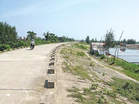 Thái Bình: Phân loại các trọng điểm, bảo vệ đê điều mùa mưa bão ảnh 1