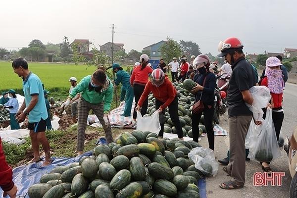 Người dân giúp tài xế thu gom 20 tấn dưa hấu đổ xuống ruộng ảnh 3
