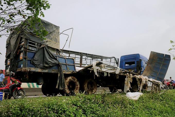 Người dân giúp tài xế thu gom 20 tấn dưa hấu đổ xuống ruộng ảnh 1