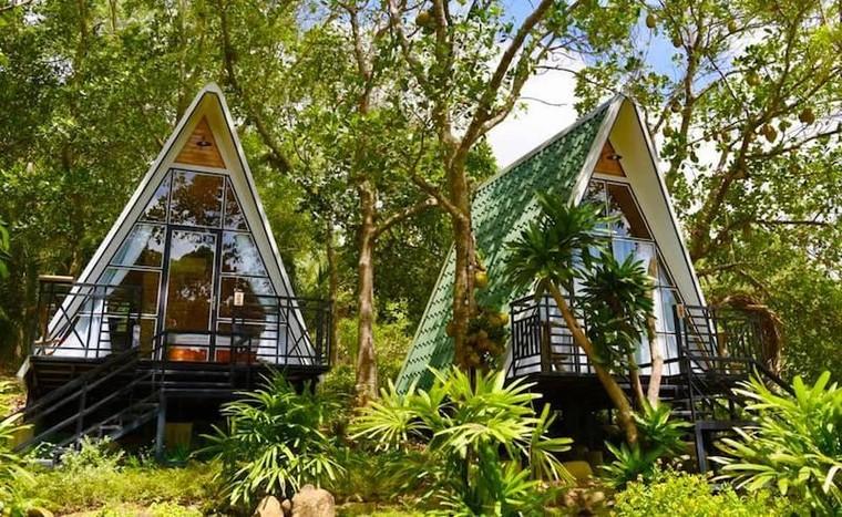 Du lịch Côn Đảo: Máy bay kín chỗ, khách sạn kín phòng ảnh 8