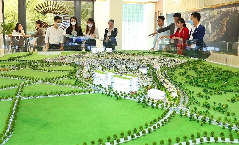 Meyhomes Capital Phú Quốc khai trương văn phòng tại trung tâm Quận 3 ảnh 1