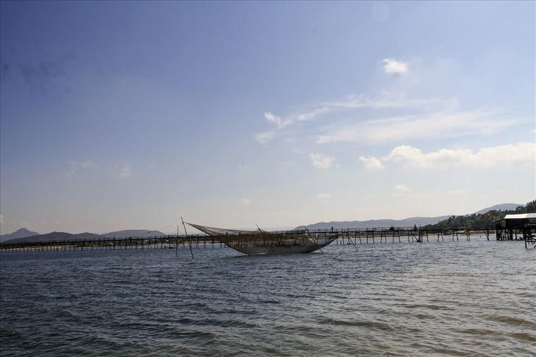 Phú Yên: Cây cầu gỗ dài nhất Việt Nam ảnh 3