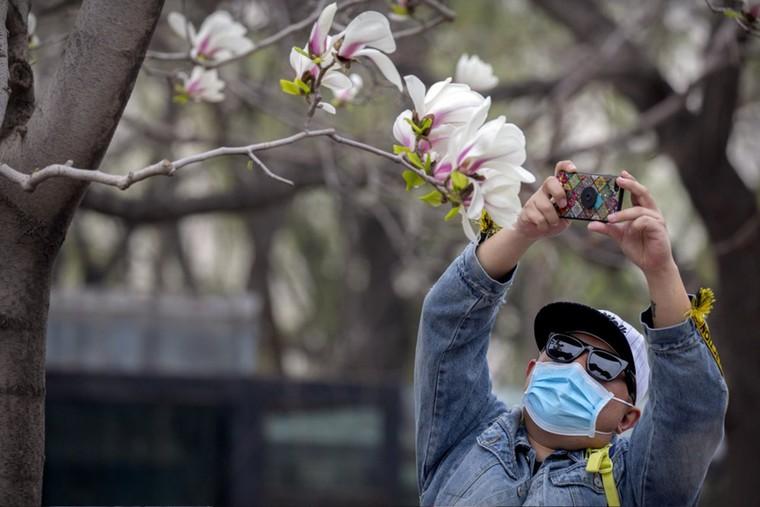 Các điểm du lịch Bắc Kinh 'rụt rè' mở cửa trở lại ảnh 9