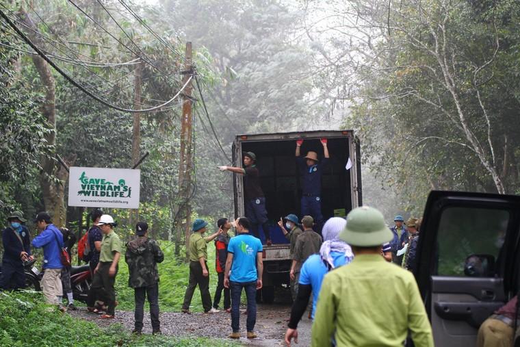 Tái thả 92 động vật hoang dã tại Vườn quốc gia Cúc Phương ảnh 1