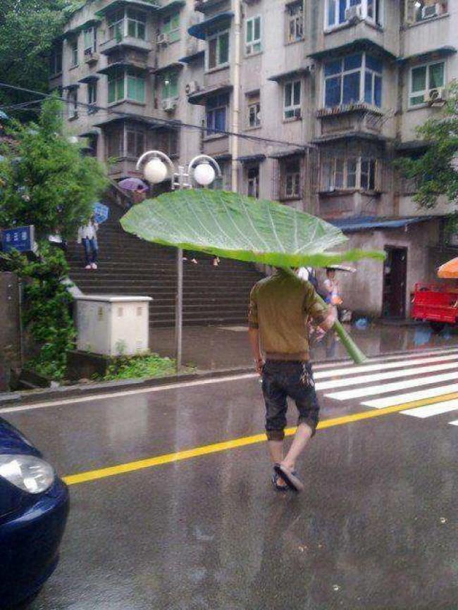 Những cách chống lại thời tiết vô cùng đỉnh cao của con người ảnh 2