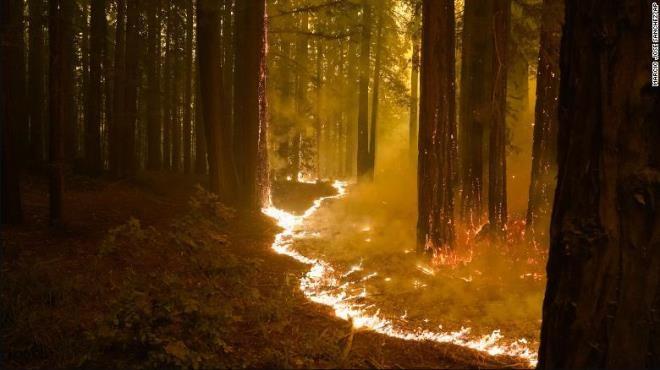 Ảnh: California chìm trong khói lửa màu cam như sao Hỏa - 3