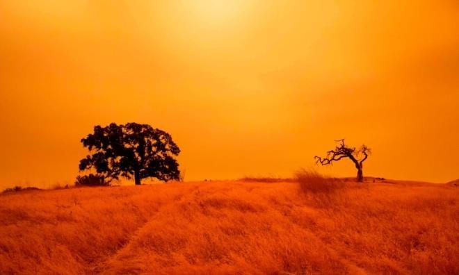 Ảnh: California chìm trong khói lửa màu cam như sao Hỏa - 8