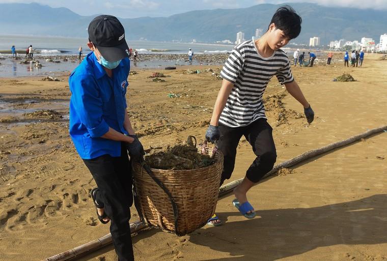 Bờ biển Quy Nhơn ngập rác sau bão số 5 ảnh 13