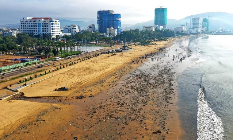Bờ biển Quy Nhơn ngập rác sau bão số 5 ảnh 3