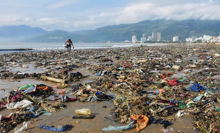 Bờ biển Quy Nhơn ngập rác sau bão số 5 ảnh 4