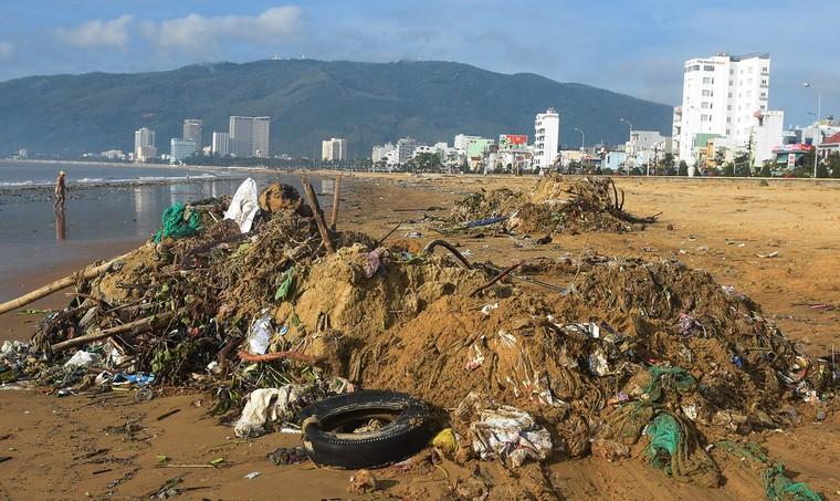 Bờ biển Quy Nhơn ngập rác sau bão số 5 ảnh 5