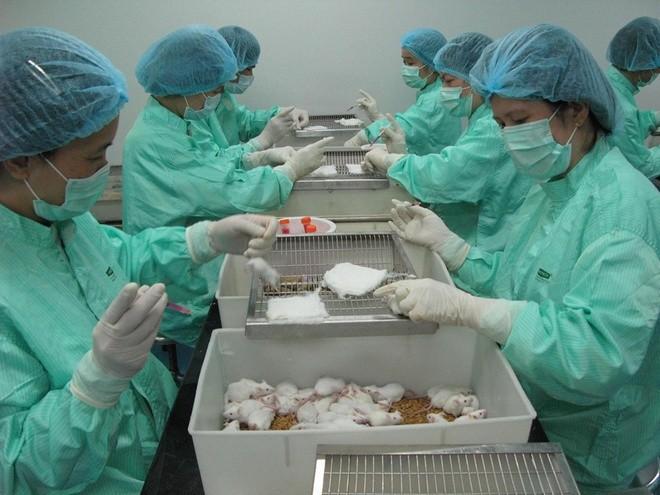 Việt Nam đã nghiên cứu vaccine Covid-19 đến giai đoạn nào? ảnh 2