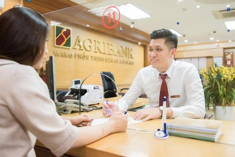 Agribank và những đóng góp tích cực, nâng tầm vị thế đối ngoại của Việt Nam năm 2020 ảnh 3