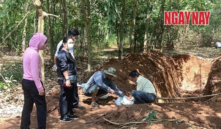 Đồng Nai: Đang làm rõ vụ lén lút chôn lấp hàng trăm con heo chết ảnh 1