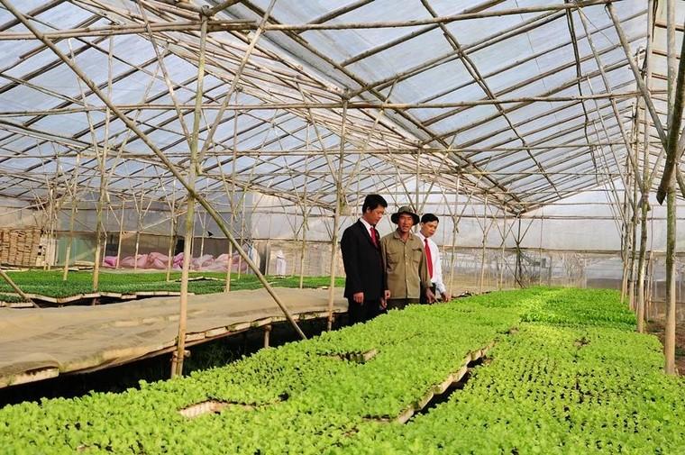 Agribank – ngân hàng chủ lực cung ứng vốn cho tam nông, tạo động lực tăng trưởng kinh tế ảnh 1