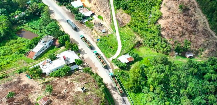 Logistics - Giải pháp nâng cao giá trị nông sản Việt ảnh 3
