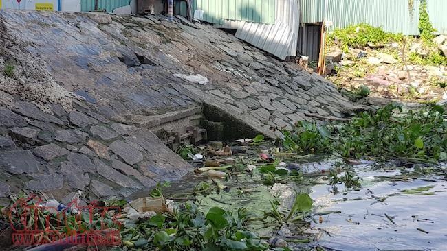 Siêu máy bơm ở TP Hồ Chí Minh 'đuối sức' trước nước sông kết hợp mưa to ảnh 1