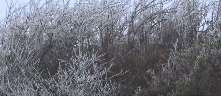 Mù Căng Chải xuất hiện băng tuyết ảnh 3