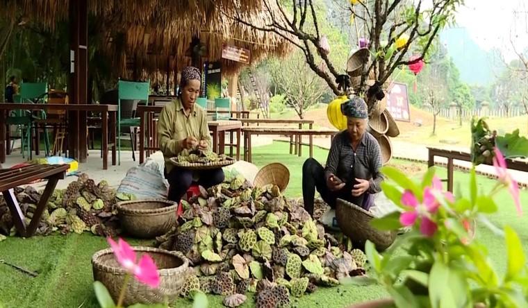 Ninh Bình: Đẩy mạnh du lịch nông nghiệp và nông thôn ảnh 1