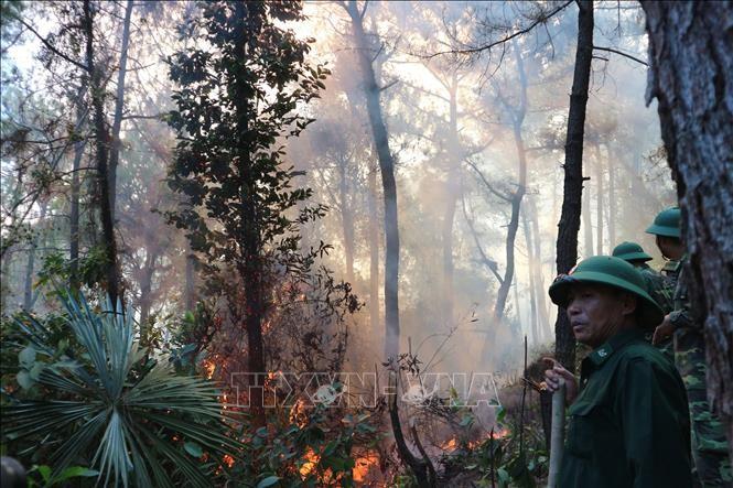 Lập chốt chặn trên quốc lộ 1A, tập trung dập lửa ở núi Hồng Lĩnh ảnh 2
