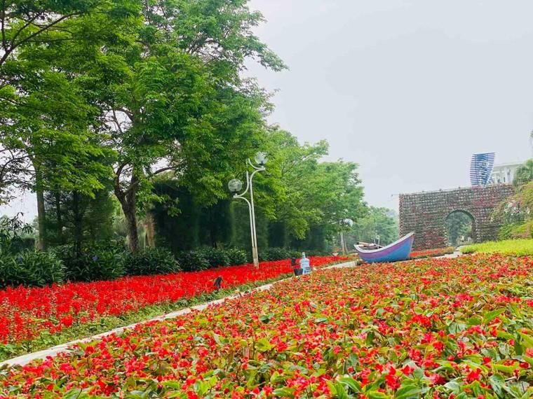 Du khách háo hức check in trước thềm Lễ hội hoa Sầm Sơn ảnh 8