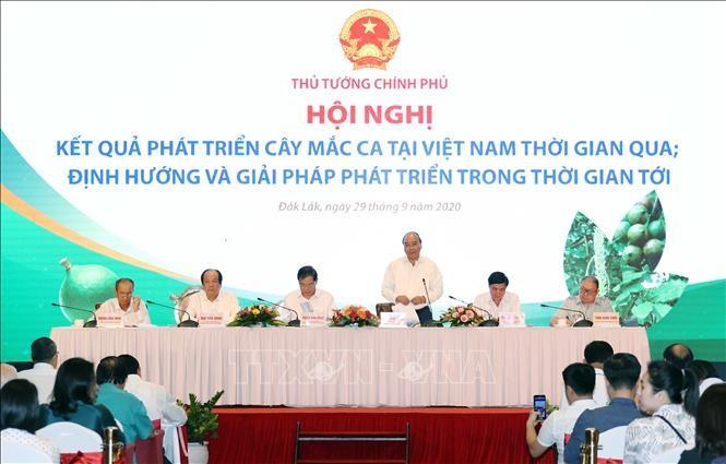 Thủ tướng Nguyễn Xuân Phúc phát biểu chỉ đạo hội nghị. Ảnh: Thống Nhất/TTXVN