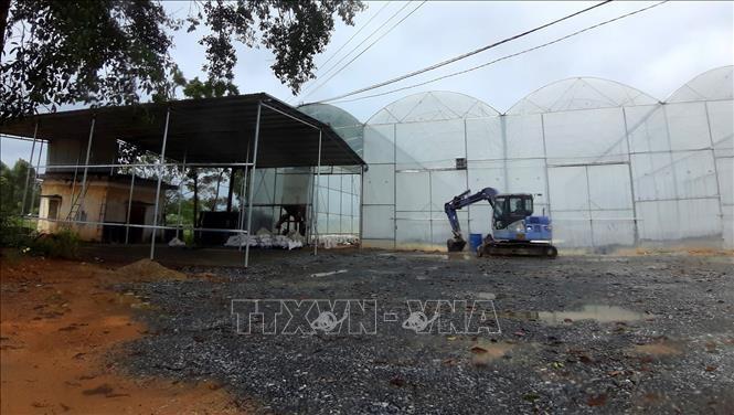 Xưởng sản xuất phân vi sinh gây ô nhiểm môi trường ở xã Tứ Mỹ, huyện Tam Nông, tỉnh Phú Thọ.