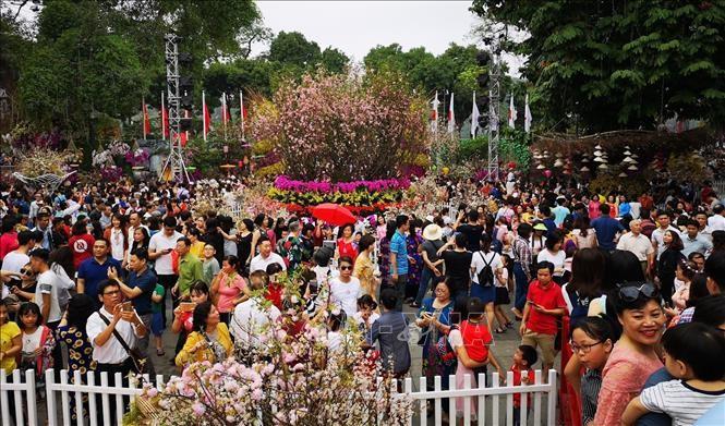Người dân và du khách tham quan, thưởng lãm hoa anh đào tại không gian lễ hội trong ngày 31/3/2019. Ảnh: Thanh Tùng/TTXVN