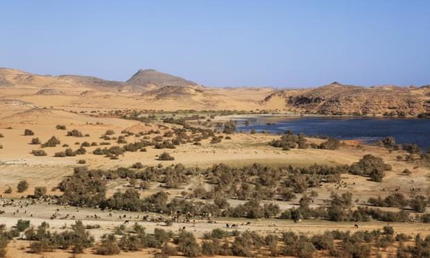 Hồ Nasser ở Dakka, Ai Cập, nơi từng là lãnh thổ của đế chế Neo-Assyria. Ảnh: Alamy.