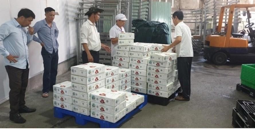 Lô hàng 2 tấn vải thiều tươi của Việt Nam thuộc tỉnh Bắc Giang đã tới Nhật Bản an toàn trong ngày hôm nay 20/6.