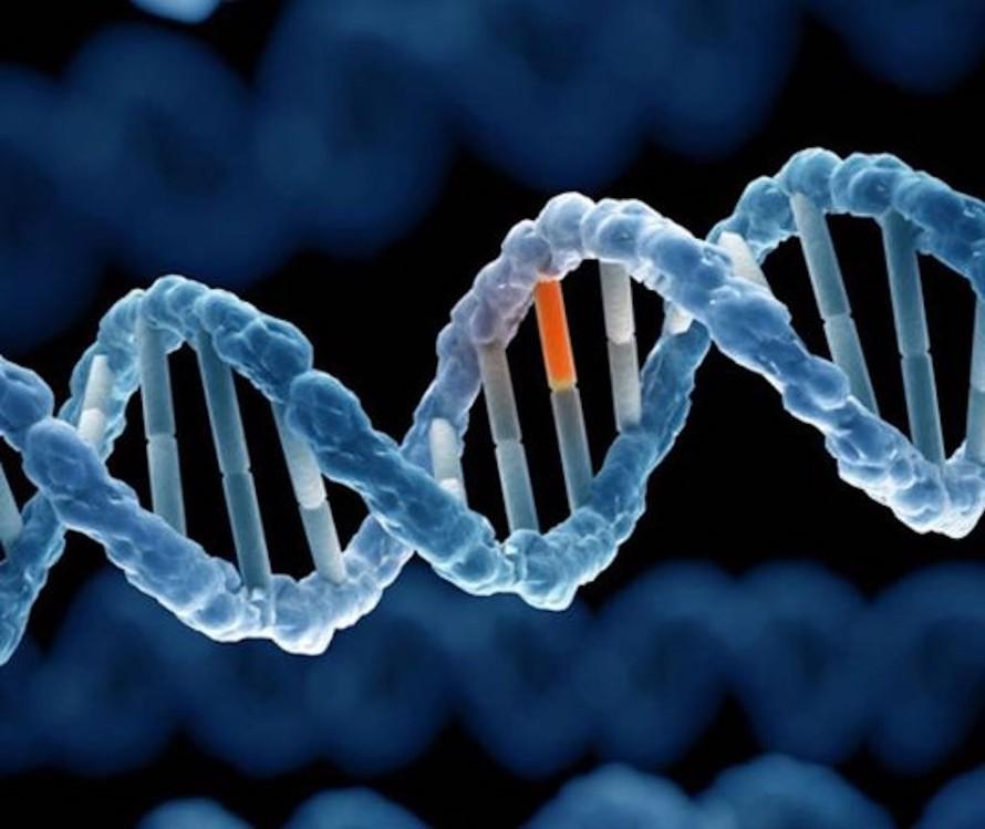 Di truyền ảnh hưởng tới sự nhạy cảm đối với COVID-19 ở một số người.