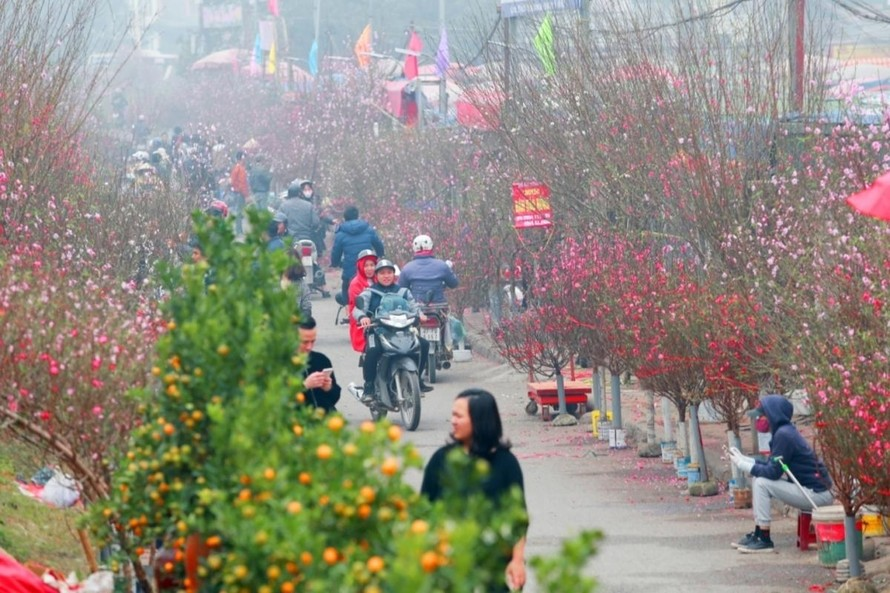 Thời tiết Tết Nguyên đán Tân Sửu: Bắc Bộ trời nắng, Nam Bộ đêm có mưa rào