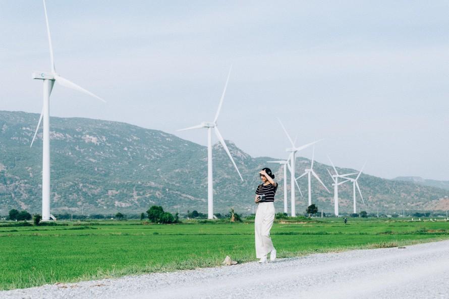Nhiều cảnh báo đáng sợ đối với điện gió