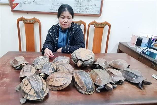 Đối tượng Nguyễn Thị Sen cùng tang vật.