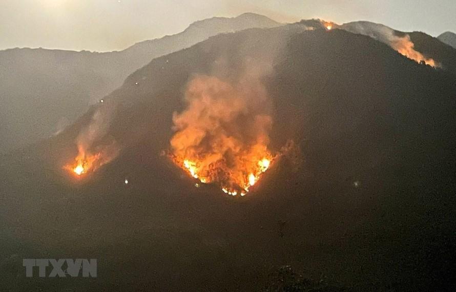 Tại điểm cháy rừng toàn cây bụi, thảm thực vật trên núi cao nên khó khăn cho các lực lượng dập lửa. (Ảnh: Việt Hoàng/TTXVN)
