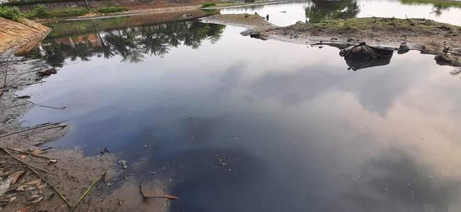 Tình trạng ô nhiễm nghiêm trọng tại hồ điều hoà Vinh Tân. (Ảnh: Tiền Phong)