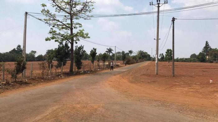 Khu đất mà nguyên Phó Giám đốc Sở TN&MT Gia Lai được phân lô, tách thửa. (Ảnh: Báo Giao thông)
