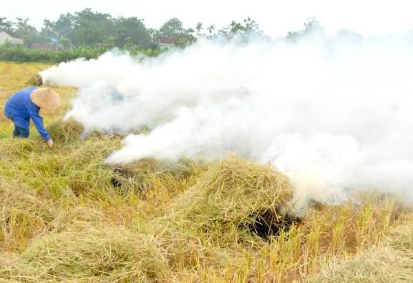 Khói bụi mù mịt từ việc đốt rơm rạ, gây ô nhiễm cho môi trường xung quanh. (Ảnh: VnExpress)