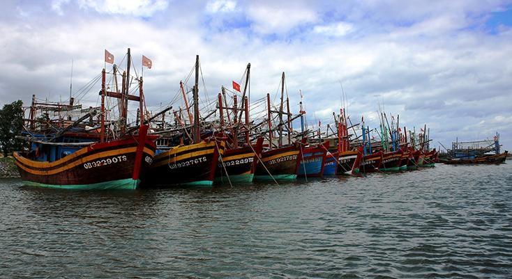 Đội tàu đánh bắt xa bờ của ngư dân tỉnh Quảng Bình. (Ảnh: Báo Quảng Bình)