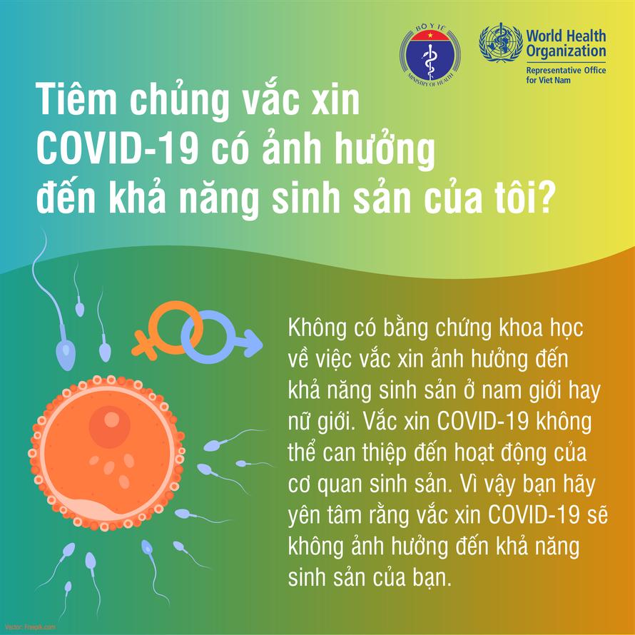 Vaccine COVID-19 không ảnh hưởng tới khả năng sinh sản