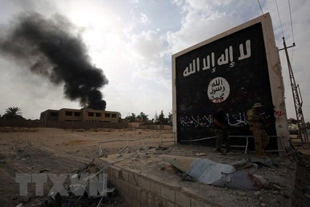 Cờ của tổ chức Nhà nước Hồi giáo (IS) gần biên giới Syria ngày 3/11/2017. (Nguồn: AFP/TTXVN)