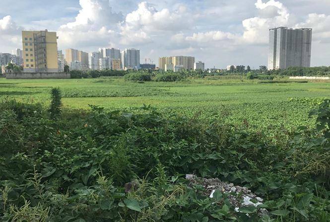 """Khu đất dự án BV Đa khoa Quang Trung """"ôm"""" đất vàng chậm triển khai gần 8 năm bị kiến nghị thu hồi."""