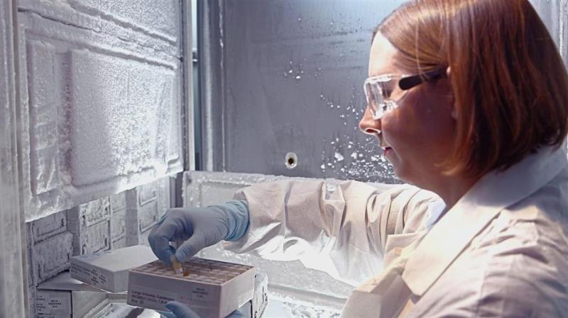 Abbott mang phát hiện này đến với cộng đồng nghiên cứu nhằm giúp đánh giá tác động của chủng virus mới với việc xét nghiệm chẩn đoán, điều trị và phát triển vắc xin trong tương lai