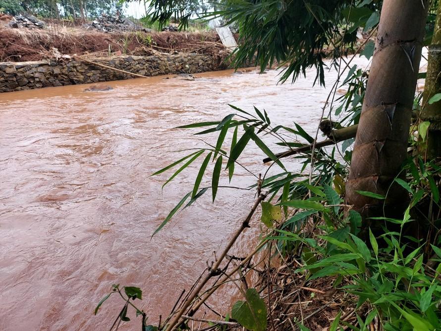 Lượng mưa không nhiều nhưng dòng nước vẫn lên cao gần qua bờ tre. Ảnh: Xuân Thời