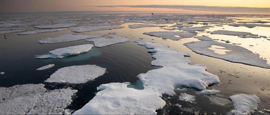 Không để biến đổi khí hậu vượt qua 'điểm tới hạn'