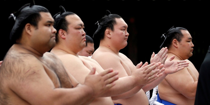 Bí quyết để các đô vật sumo không mắc các triệu chứng béo phì